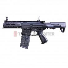 G&G ARP 556 V2S AEG EGC-556-V2S-BNB-NCM